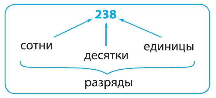 таблица разряды и классы, число238